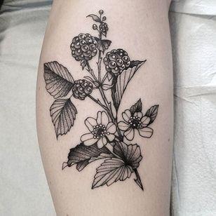 #CuttyBage #gringa #blackwork #sketch #pontilhismo #dotwork #flor #flower #planta #plant #fruta #fruit
