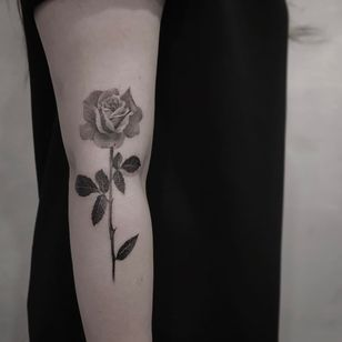 Rose tattoo by Cold Gray #ColdGray #rosetattoos #blackandgrey #realism #realistic #rose #flower #thorns #leaves #nature #floral #tattoooftheday