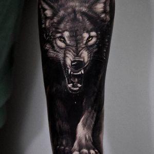 Wolf via instagram secretflesh_tattoo #realism #blackandgrey #wolf #animal #portrait #andreystepanov