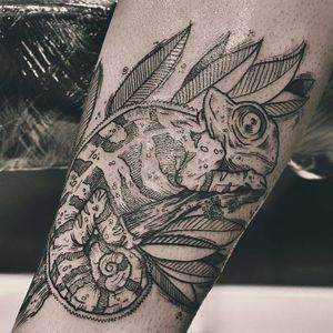 Camaleônico #TamiresMandacaru #TatuadorasDoBrasil #brazilianartist #brasil #brazil #sketchstyle #estilorascunho #blackwork #fineline #camaleao #chameleon #animal