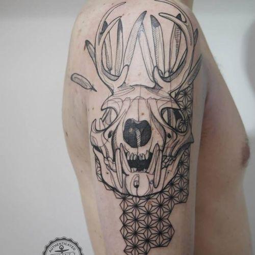 Sketch style skull tattoo by Laurent Z #LaurentZ #sketch #skull #animalskull #deer #deerskull