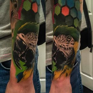 Vibrant and clean parrot tattoo done by Craig Cardwell. #CraigCardwell #realistic #painterly #parrot #animaltattoo