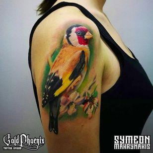 Goldfinch by Symeon Makrynakis (via IG -- symeon.mak_tattoo) #SymeonMakrynakis #bird #birdtattoo #goldfinch #goldfinchtattoo