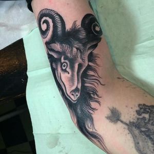 #goat #bode #tatuadoresbrasileiros #tatuadoresbrasil #JoaoJoao