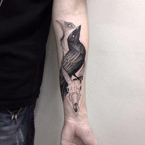 Corvo por Alexandre Aske! #AlexandreAske #Ttatuadoresbrasileiros #tatuadoresdobrasil #tattoobr #tattoodobr #corvo #crow #raven #skull #crânio #caveira #blackwork #sketch