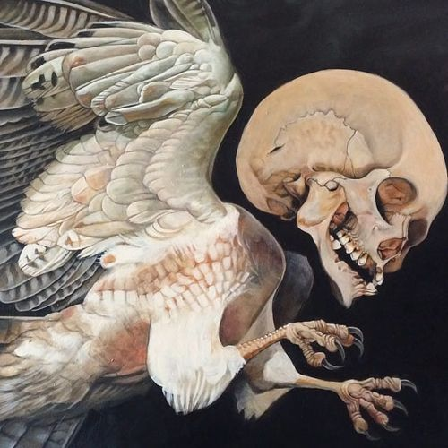Winged Skull by Alex Reisfar (via IG-alexreisfar) #surrealism #artist #artshare #painting #fineart #AlexReisfar