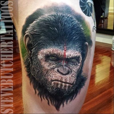 Caesar #SteveButcher #macacotattoo #monkeytattoo #macaco #monkey #realismo #realism #caesar #planetoftheapes #planetadosmacacos #movie #filme #nerd #geek #andyserkis