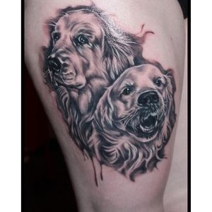 These two Golden Retrievers look like a pair of troublemakers. Black and grey realism tattoo by Moona Kumpusalmi #goldenretriever #dog #realism #blackandgrey #blackandgreyrealism #MoonaKumpusalmi
