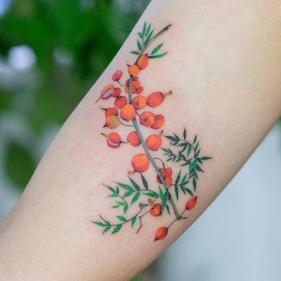 Nature things by Zihee #Zihee #color #watercolor #realism #realistic #painting #nature #berries #fruit #flowers #leaves #branch #tattoooftheday