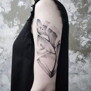 Feather tattoo by Bianka Szlachta #BiankaSzlachta #ignorantstyle #folk #naive #linework #minimalistic #feather