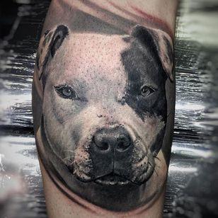 Realistic pit bull tattoo by Nuno Feio. #realism #blackandgrey #petportrait #dog #pitbull #NunoFeio