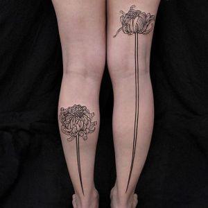 Chrysanthemum by Chaim Machlev #ChaimMachlev #linework #blackwork #chrysanthemum #tattoooftheday