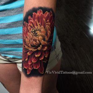 Darker Petals by Vic Vivid (via IG-vicvivid) #chrysanthemum #flower #november #birthflower #mum #realistic #color #VicVivid