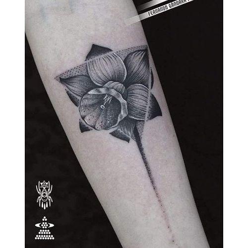 Graphic black and grey dotwork daffodil tattoo by Fernando Gandara Frechoso. #daffodil #dotwork #graphic #blackandgrey #flower #FernandoGandaraFrechoso