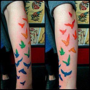 Livre pra voar #OrgulhoGay #GayPride #OrgulhoLGBT #ParadaGay #GayParade #preconceitoNao #amorlivre #freelove #arcoiris #rainbow #birds #passaros #aves