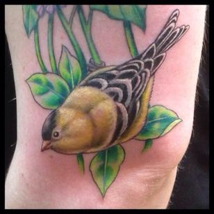 Goldfinch by Jose Rodriguez III (via IG -- bluegeishatattoo) #JoseRodriguezIII #bird #birdtattoo #goldfinch #goldfinchtattoo