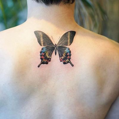 Butterfly by Nando Tattoo (via IG-nandotattooer) #tinytattoo #microtattoo #flora #fauna #NandoTattoo
