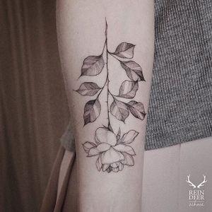 Fine line tattoo by Zihwa. #Zihwa #SouthKorean #SouthKorea #fineline #floral #blackandgrey #flower #rose