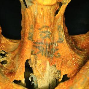 This mummy's got some street cred with its neck tattoos... #mummy #tattoohistory