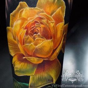 A brilliant yellow rose by Vic Vivid (IG-vicvivid). #color #realism #Roses #VicVivid