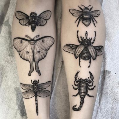 All the flying things by Nick Stegall #NickStegall #blackandgrey #realism #realistic #illustrative #bee #moth #dragonfly #butterfly #beetle #scorpion #insects #nature #wings #whiteink #tattoooftheday