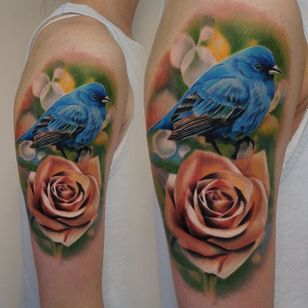 A blue bird perched atop a fully bloomed pink rose by James Artink (IG— james_artink). #bluebird #color #JamesArink #realism #rose