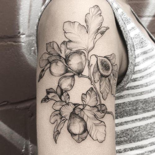 Fig tattoo by Lili #lillesnegl #Lili #blackandgreytattoo #lineworktattoo #finelinetattoo #figtattoo #foodtattoos #naturetattoo #leavestattoo #planttattoo #tattoooftheday