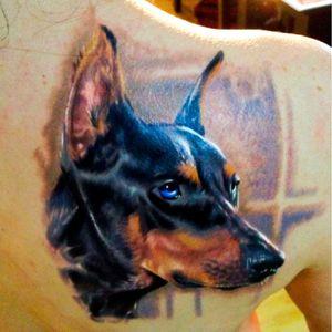 Kobay Kronik. #KobayKronik #cachorros #dog #mascote #brasil #portugues