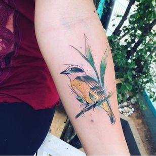 #ArthurOliveira #watercolor #aquarela #tatuadoresdobrasil #brasil #brazil #colorido #colorful #ave #passaro #bird #bemtevi #planta #plant #folha #leaf
