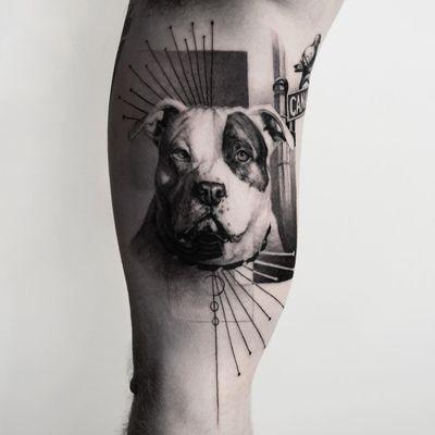 Pitbull pup tattoo by Oscar Akermo #OscarAkermo #petportraittattoo #blackandgrey #realism #realistic #hyperrealism #pitbull #dog #puppy #streetsign #pigeon #bird #Linework #abstract #mashup #tattoooftheday