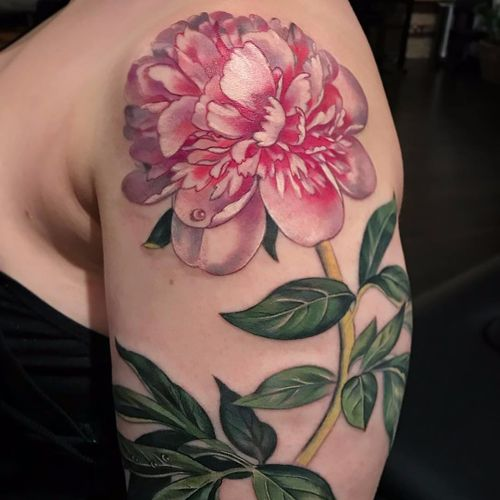 Fresh cut flower by Stephanie Brown #StephanieBrown #feralcatbox #color #realistic #realism #flower #peony #leaves #floral #nature #tattoooftheday