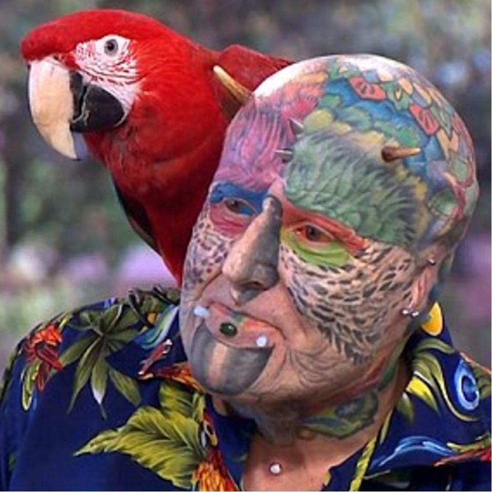 Ted Parrotman, the man who wants to become a parrot. #Parrotman #TedRichards #TedParrotman #Parrot