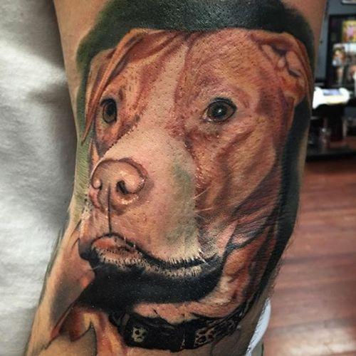 Sweet dog tattoo by Pony Lawson. #realism #colorrealism #dog #petportrait #PonyLawson