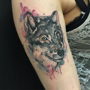 Watercolor wolf tattoo by Clare Lambert. #watercolor #ClareLambert #wolf #animal