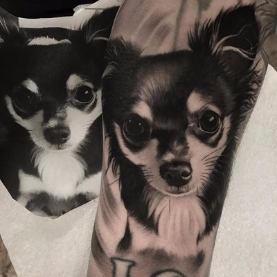 Cutie patootie by Duncan Whitfield #DuncanWhitfield #blackandgrey #realism #realistic #hyperrealism #photorealism #dog #petportrait #puppy #animal #tattoooftheday