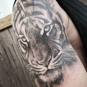 A majestic tiger via Chris Mata'afa (IG—chris_showstoppr). #blackandgrey #ChrisMataafa #realism #tiger