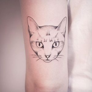 Kitty cat by Melina Wendlandt #cat #animalhead #kittycat #linework #dotwork #subtle #minimalism #blacwork #btattooing #MelinaWendlandt
