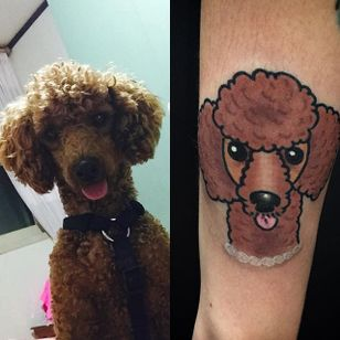 Cheeky poodle portrait by @twinstattoo_woo. #poodle #dog #traditional #portrait #twinstattoo_woo