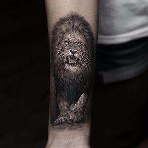 King 'o' the jungle by Stefano Alcantara #StefanoAlcantara #realism #realistic #hyperrealism #lion #junglecat #safari #kingofthejungle #roar #cat #nature #animal #tattoooftheday
