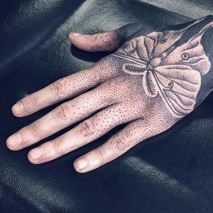 Moth Tattoo by Shanna Keyes #moth #blackwork #dotwork #fineblackwork #blackworkartist #blackink #ShannaKeyes