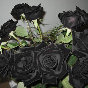 Black roses via Pinterest #blackroses #blackrose #tattooinspiration #theme #bouquet