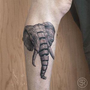 Elephant by Sven Rayen (via IG-svenrayen) #geometric #blackandgrey #animal #elephant #illustrative #svenrayen