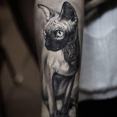 Sphynx cat tattoo by Stefano Alcantara #StefanoAlcantara #besttattoos #blackandgrey #neotraditional #realism #realistic #mashup #cat #sphynx #ornamental #pattern #gilded #light #tattoooftheday