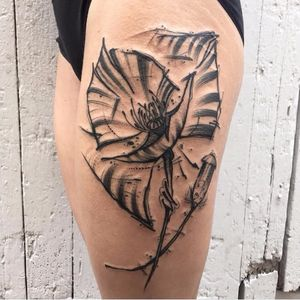 Poppy tattoo by Kevin Plane #KevinPlane #sketchstyle #sketch #blackwork #poppy #flower