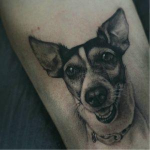 #cachorro #dog #AdrianBueno #realismo #realismopretoecinza #pretoecinza #blackandgrey #talentonacional #brasil #brazil #portugues #portuguese