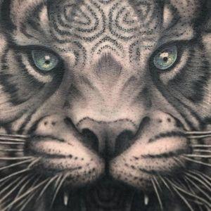 Tiger by Abián LaMotta #AbiánLaMotta #tiger #blackandgrey #realism #tattoooftheday