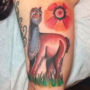 Alpaca tattoo by Cori James. #traditional #alpaca