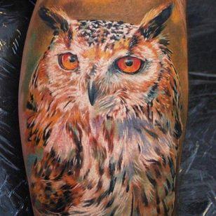 #dimitriysamohin #owl #bird #animal #realistic