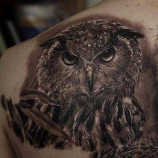 #dimitriysamohin #owl #animal #bird #realistic