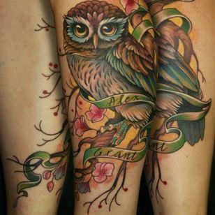#owl #animal #bird #neotraditional